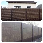 Еврозабор. Забор и Ворота всех видов Полтава - foto 5